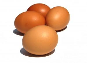Huevos[1]
